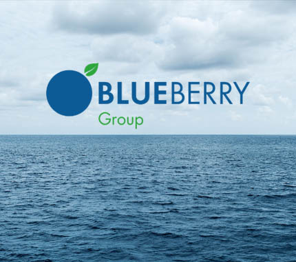 Blueberry Group